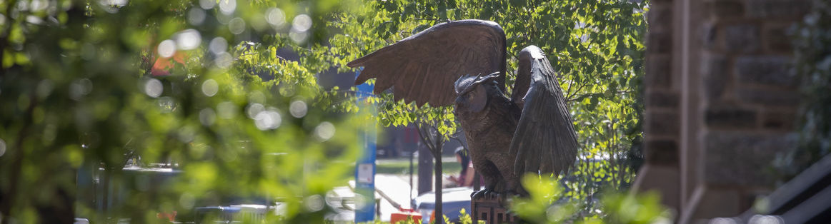 The Owl Statue found in O'Connor Plaza on Main Campus.